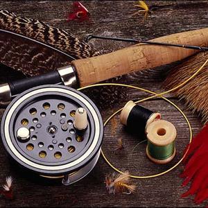 Охотничьи и рыболовные магазины Камешково