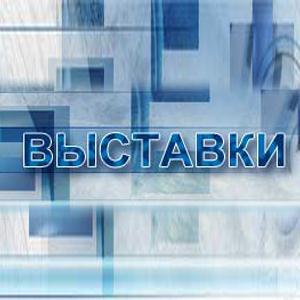 Выставки Камешково